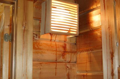 Активно выделяемая смола из хвойных пород деревьев в бане