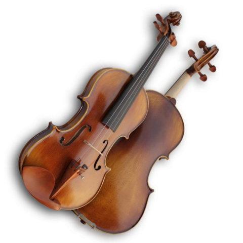 Ель - один из лучших материалов для музыкальных инструментов