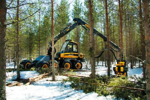 Современное оборудование для заготовки леса – харвестр