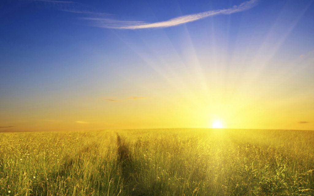 Прямые солнечные лучи вредны для деревянной отделки